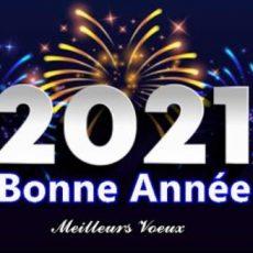 Bonne Année 2021 – Meilleurs Voeux